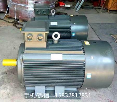 供应衡水永动 YE3电机 YX3电机 节能电机
