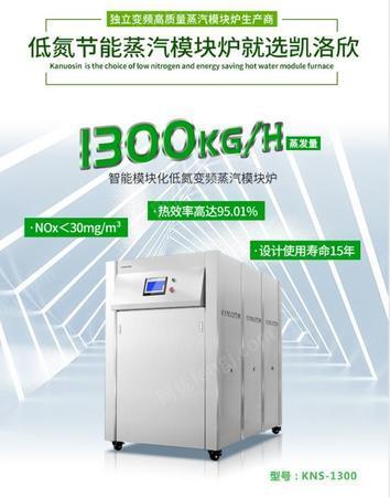 供应1吨燃气模块炉凯洛欣节能模块锅炉