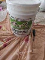 黑龙江哈尔滨出卖乳白胶大桶