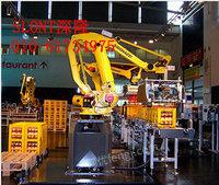 北京深隆机器人  SLONT涂胶机器人