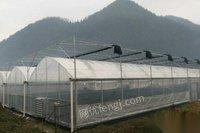 出售崇左玻璃智能温室 薄膜连栋温室 无土栽培种植