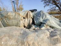 低價出售聚乙烯大棚塑料100噸,滴灌帶60噸,