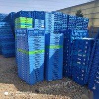 北京出售塑料箱出售周轉塑料箱