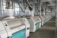 安徽宿州专业回收面粉机设备