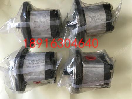 供应台湾康百世P206RP01DT齿轮泵
