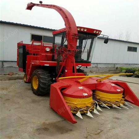 供应自走式玉米秸秆青储收割机 皇竹草粉碎收获机 青储机