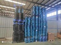 吉林长春出售塑料托盘九成新蓝色黑色 尺寸1200*800*150 现货一百个左右.长期有货,