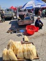 黑龙江哈尔滨出售9.9成新玉米膨化机