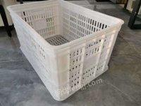 吉林塑料托盘,塑料箱,塑料筐,塑料垃圾桶出售