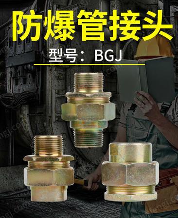 供应BGJ防爆管接头碳钢材质穿板接头桥架接头定制
