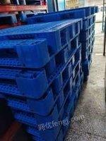 长春市塑料托盘 塑料地拍子 冷库托盘 一吨托盘优惠出售