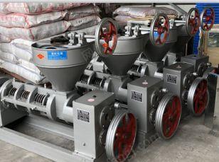 供应湖南怀化会同2020榨油机设备 8090100120160型