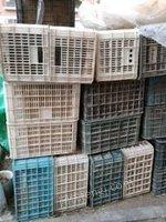 新疆阿克苏出售编织筐