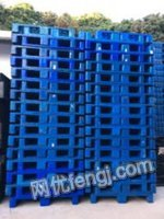 江西九江大量批发塑胶卡板塑胶托盘地台板美国板韩国板日本板箱出售