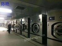 河南郑州出售学校洗衣房二手50公斤洗脱机海狮洗脱机50公斤烘干机烫平机等
