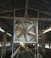广东韶关出售九成新养殖大风机、一台养殖加温炉 、一台榨粪机