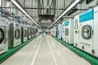 广西南宁售二手干洗机水洗机烘干机干洗店设备洗涤厂收购