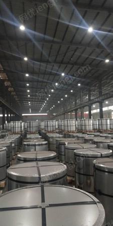 上海宝钢彩涂板0.6*1200畜牧专用.