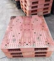 天津武清区出售一批面粉厂饲料厂用的1311双面平板塑料托盘福建提货