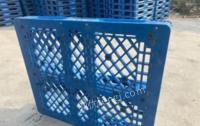 天津武清区出售各种规格货架托盘,周转塑料托盘,周转箱,折叠筐等,大量现货,价钱面谈.