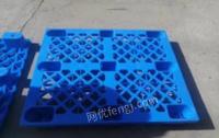 河北邯郸天津开发区出售塑料托盘