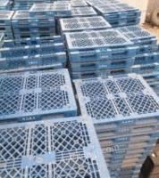 天津武清区长期出售塑料托盘