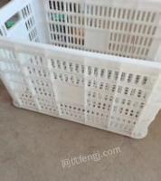 辽宁丹东塑料筐出售