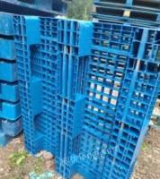 北京顺义区北小营出售塑料托盘