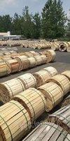 回收光缆出售 出售光缆辽宁丹东大量回收