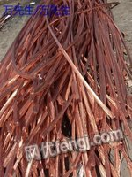 广州求购铜缆,铝缆一批