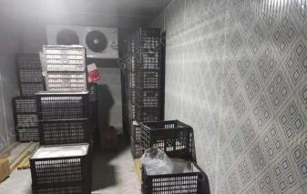 湖南益阳二手闲置2019年冷库50立方一个转让