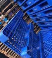 山东青岛低价处理一批全新塑料托盘1200*1000可周转上